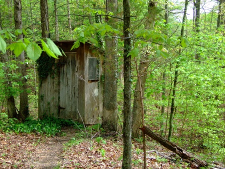 spring-outhouse