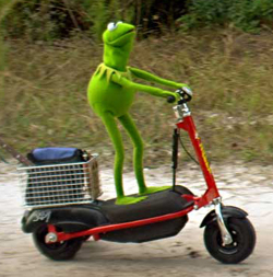 kermit-scooter1